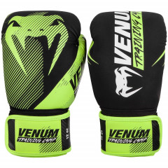 Перчатки Venum Training Camp 2.0 Boxing Black/Neo