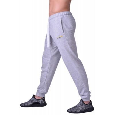 Спортивні штани BERSERK PREMIUM grey (01015) фото 1