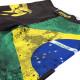 Шорты Venum Brazilian Flag (00343)